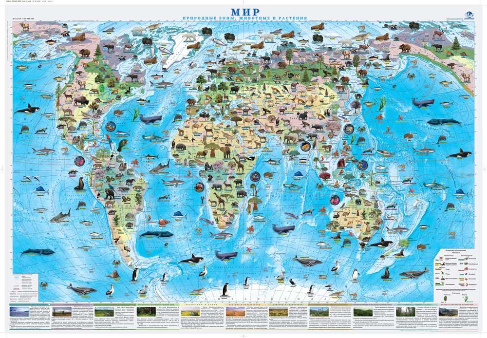 """Настенная карта """"Мир. Природные зоны, животные и растения"""" 1,0*0,7 м ламинированная"""